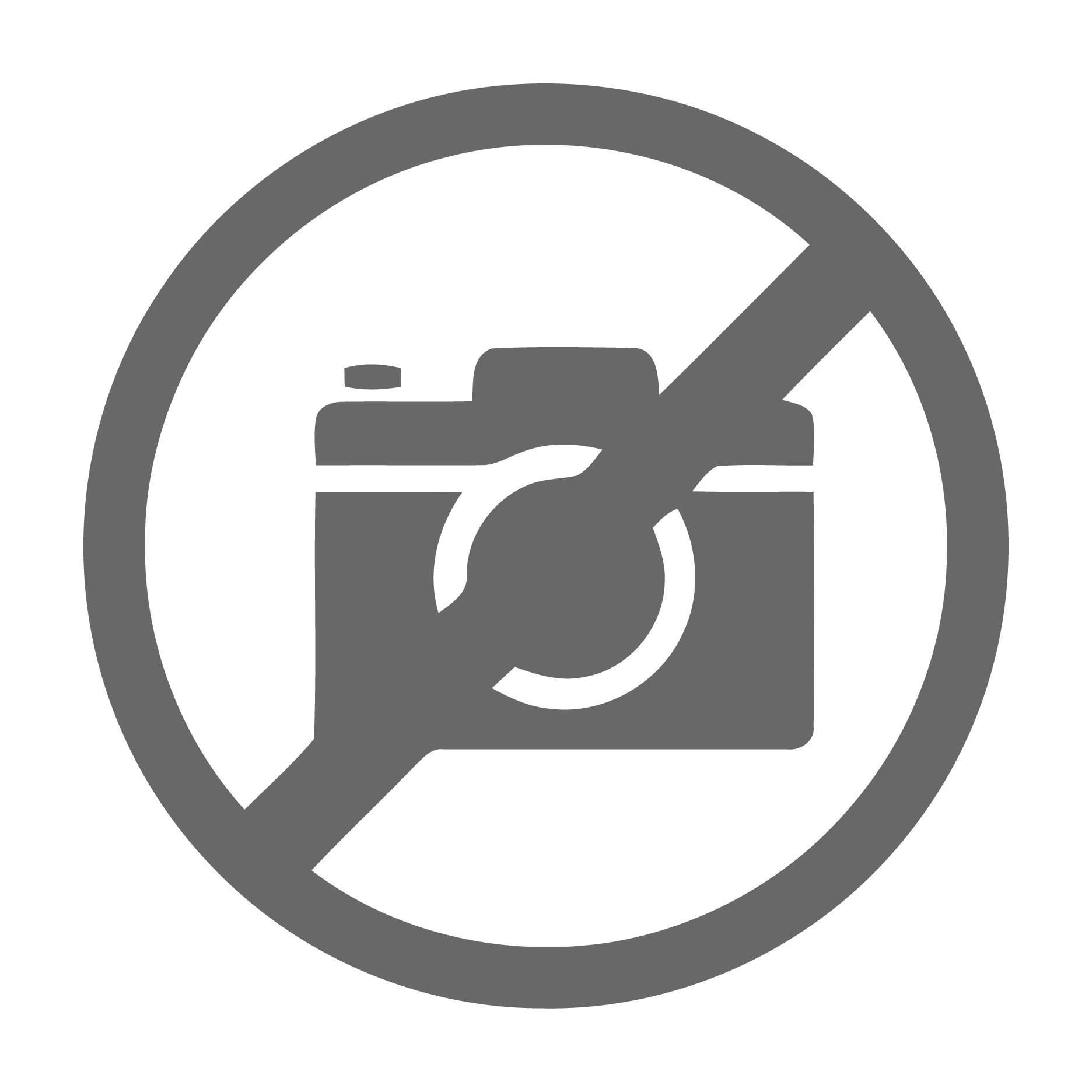 no-image-icon